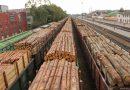 Президент підписав мораторій на експорт необробленої деревини