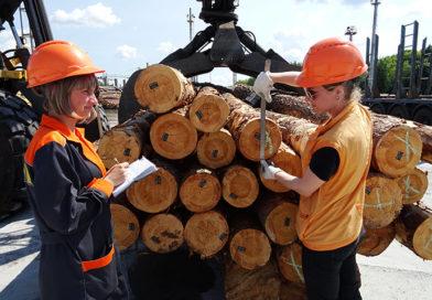 (Українська) Українська деревообробка відроджується на Рівненщині Скандинавські інвестори розпочинають будувати у Сарненському районі на півночі Рівненщини новий лісопильний завод — другий за останні два роки. Обсяг залучених інвестицій — 20 млн. євро