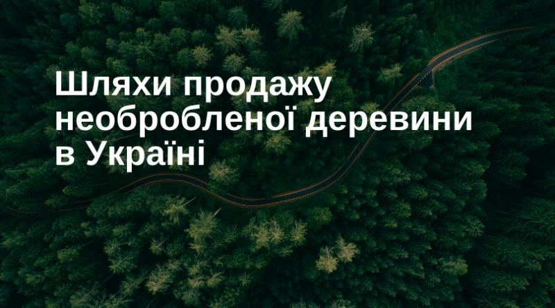 Пути продаж необработанной древесины в Украине.